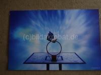 Basketballkorb 75x50